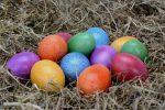 ΕΦΕΤ: Ενημέρωση των καταναλωτών για τα αυγά