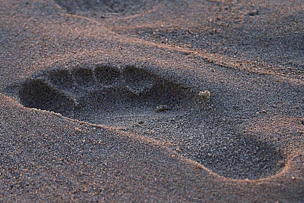 footprint 908273 1920