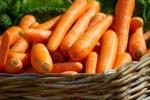 Τα ευεργετικά στοιχεία του καρότου